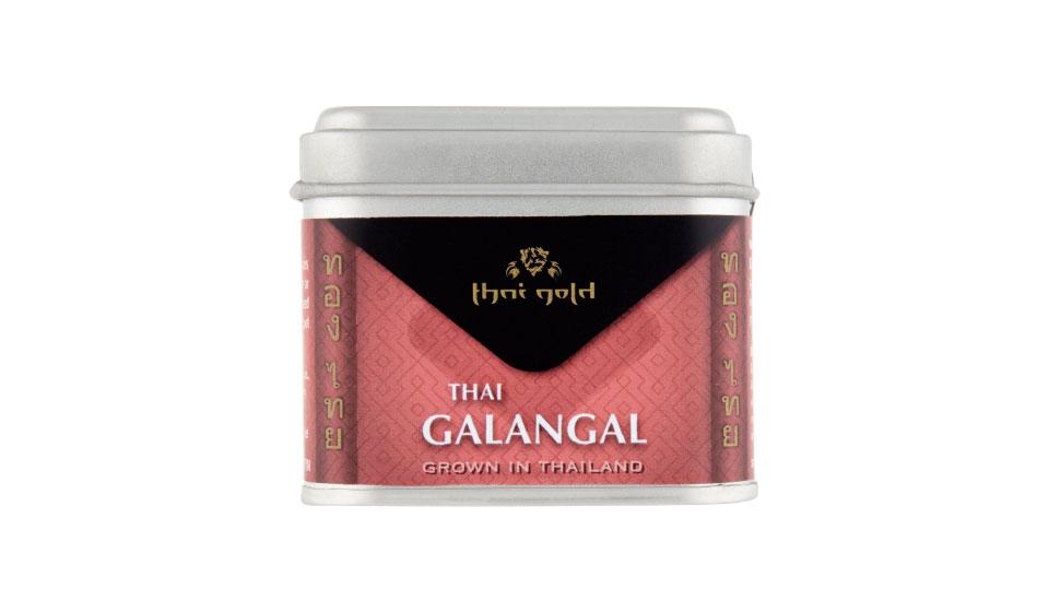 Thai Galangal